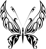 black and white drawing of a butterfly