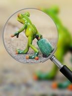 Photo of toy frog through a magnifying glass