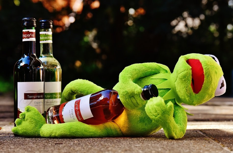 soft kermit with wine bottle