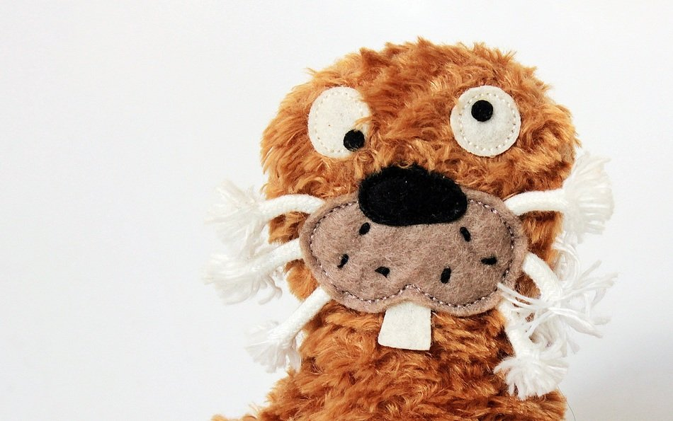 earless funny stuffed toy