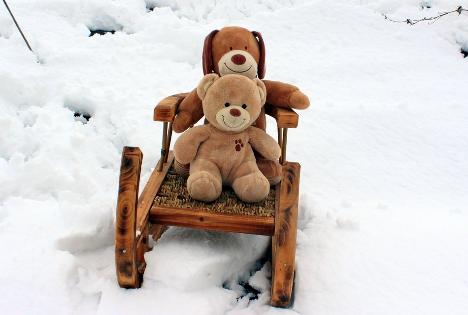 Teddy Bears Embrace winter season