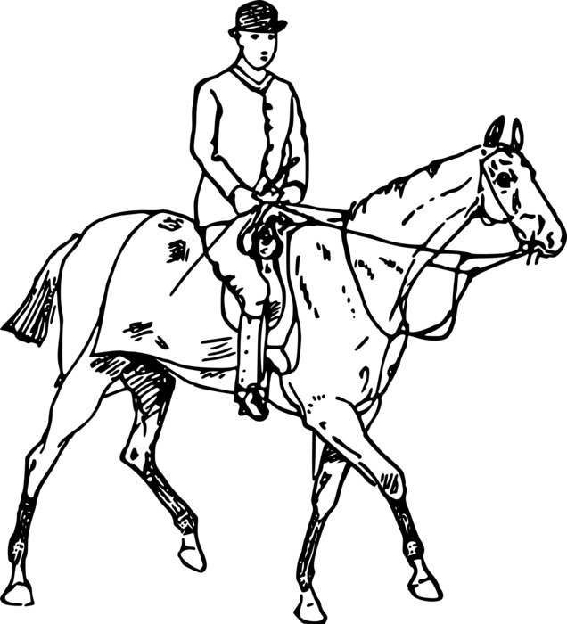 black and white drawing of a rider on the horse