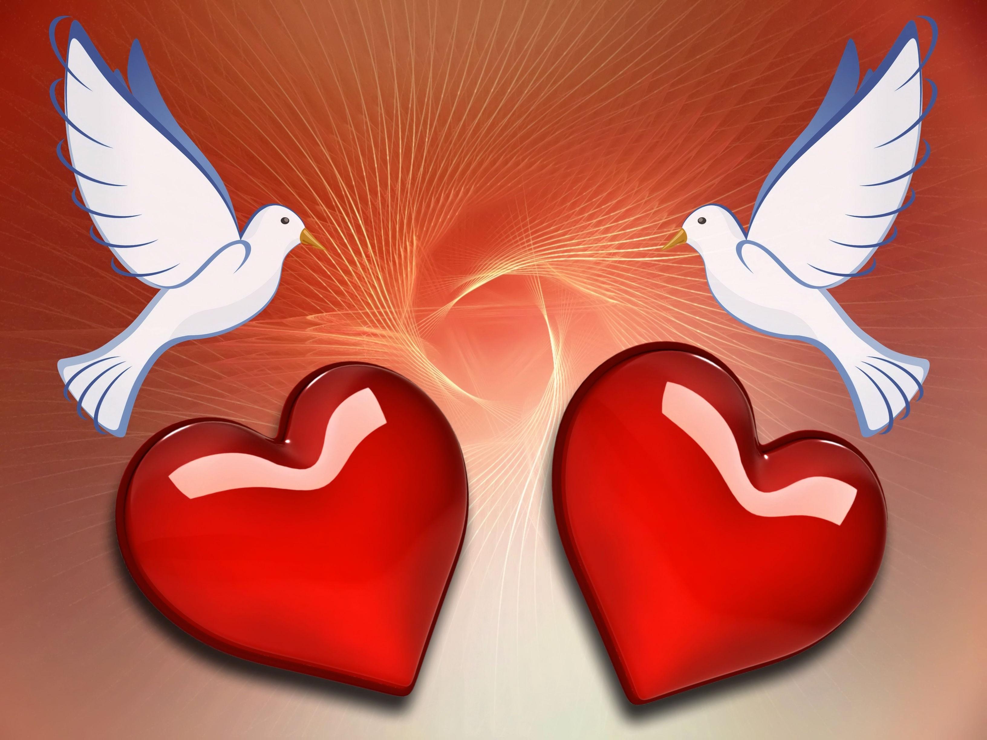 Открытки о двух сердцах, сын