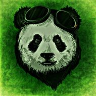 Panda with glasses drawing
