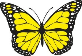 painted yellow butterfly