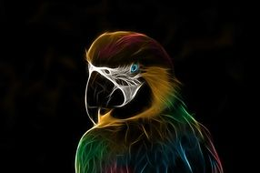 beautiful drawing of a parrot