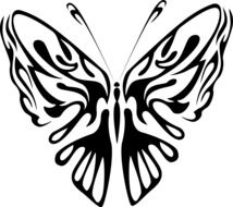 black and white illustration of a butterfly