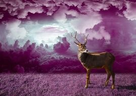 drawn red deer on a background of purple clouds