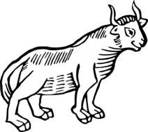 black and white drawing of a bull