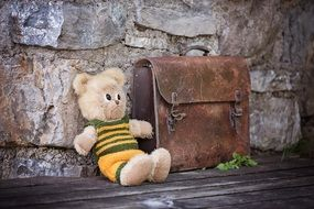 Teddy bear and leather case