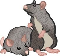 two small gray mice drawing