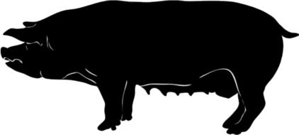 Black silhouette of piggy