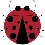 red Lady Bug drawing