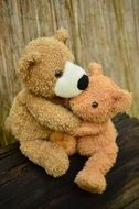 photo of two hugging teddy bears