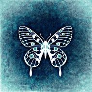 painted butterfly on blue background