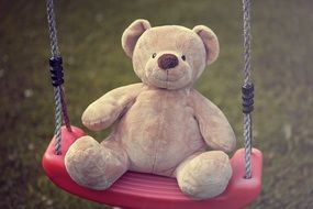Beautiful Teddy Bear on the swing