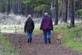 a couple of elderly people walking a dog