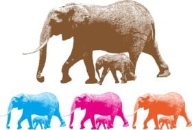variety of elephants in a colorful picture