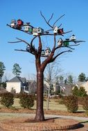 Birdhouses on the tree