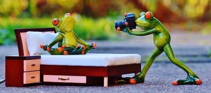 Photographer Frog bed funny figures