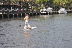 Paddle board on water