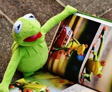 kermit watching picture book