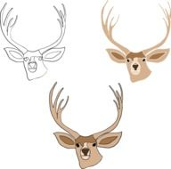 drawn three deer heads with horns