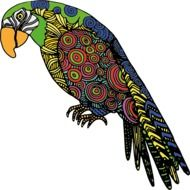 color parrot as a drawing