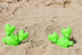 green Crab Toys on sand beach