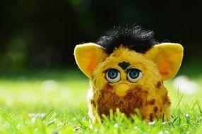 yellow furby on the green grass