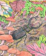 bright drawing with the image of a stag beetle