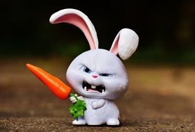 evil bunny with a carrot in hand