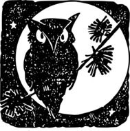 Owl Moon Bird drawing