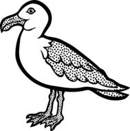 black and white drawing of a seagull