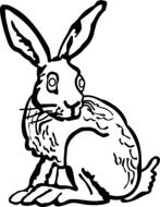 hare with long ears as a graphic image
