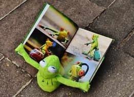 funny kermit watching picture book