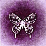 white silhouette of a butterfly on the purple background