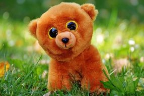 teddy bear with glitter eyes