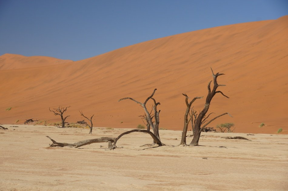 wilderness of Namibia