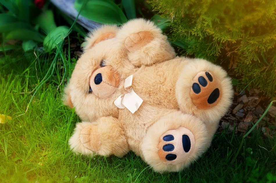 teddy bear on ground