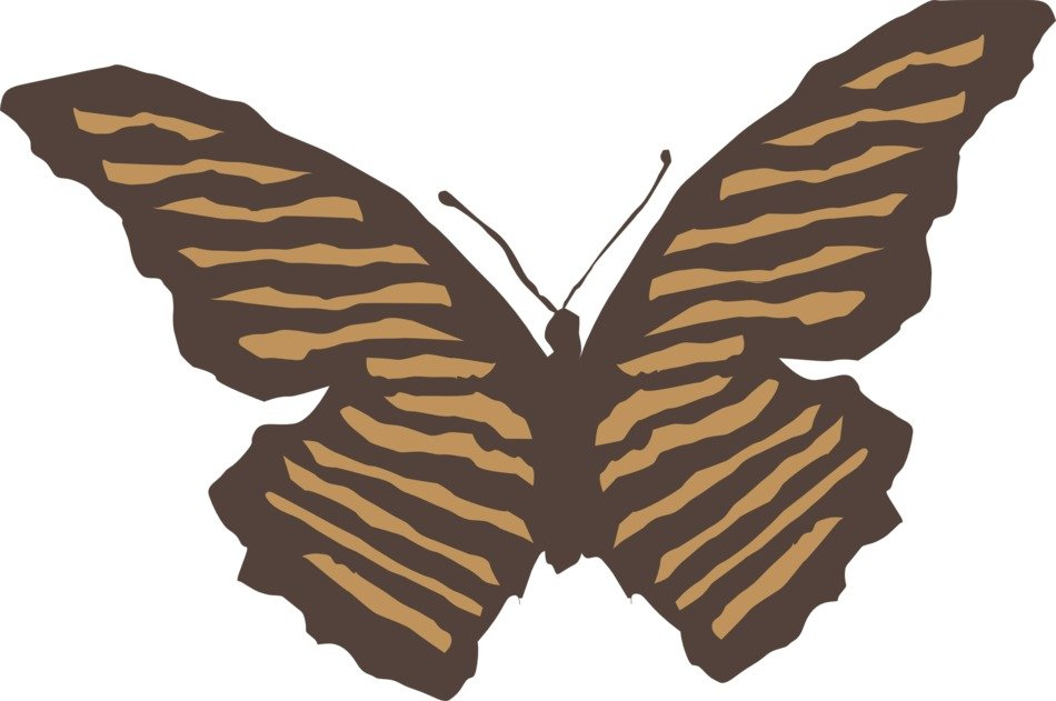 painted brown striped butterfly