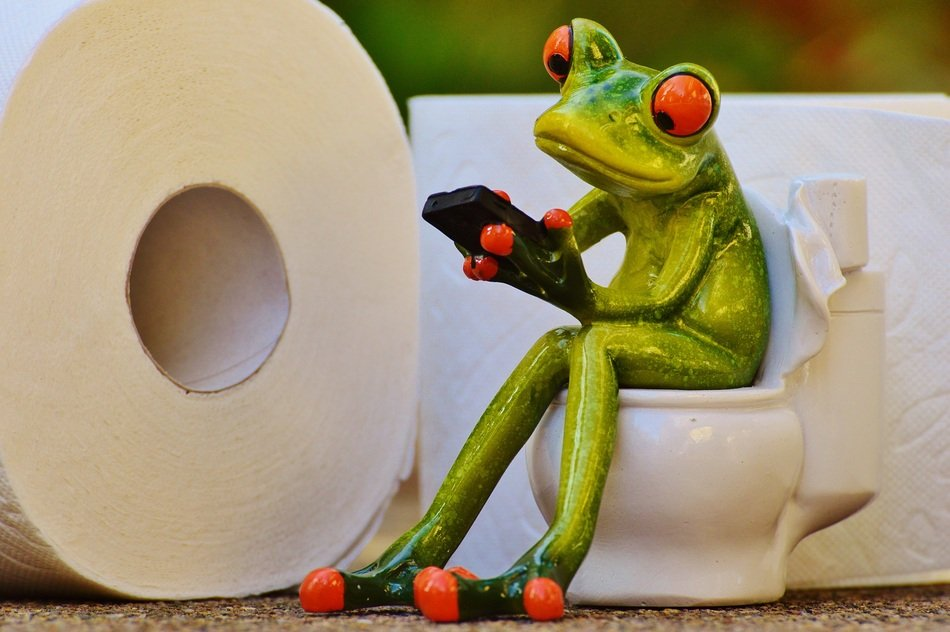frog on the toilet with tablet