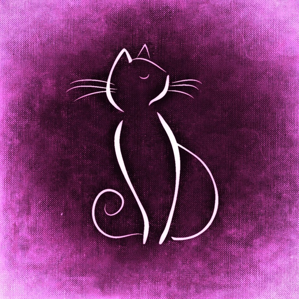 white silhouette of a cat on the purple background