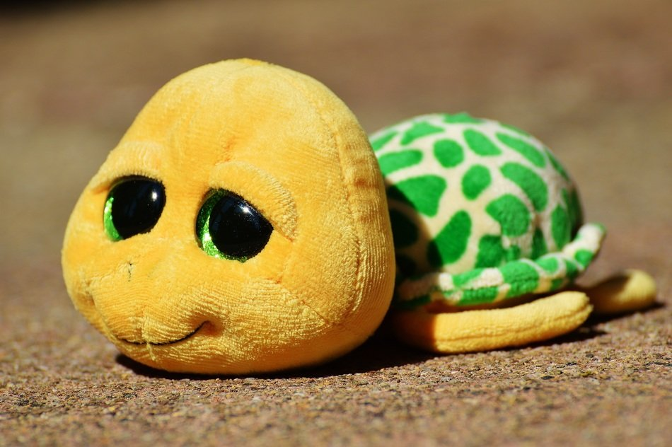 soft toy turtle