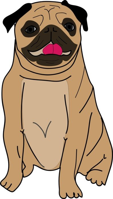 a cute brown pug drawing