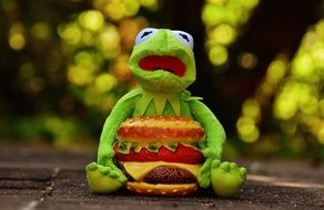 green frog sitting with cheeseburger