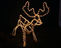 decorative reindeer for Christmas