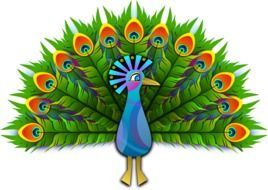 Peacock stylised clip art