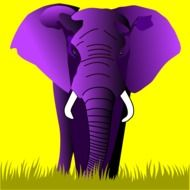 Purple Elephant as a colorful illustration