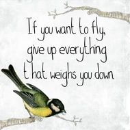 Bird Quote Motivational drawing